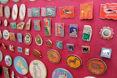 Нужны значки ФАУНА для выставки юннатам - Экспозиция - фото 3