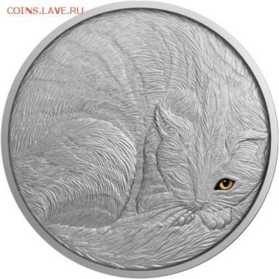 Кошки на монетах - 2016-1