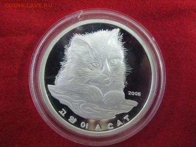 Кошки на монетах - С.Корея-1
