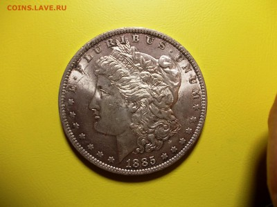 США доллар 1885 года до 18.12.16 г. в 22-00 по МСК - DSCN2200