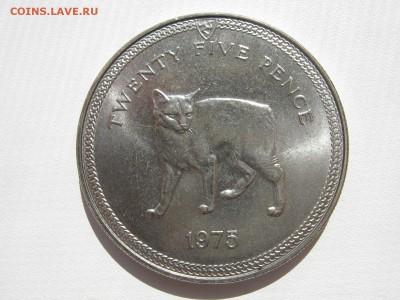 Кошки на монетах - IMG_7809