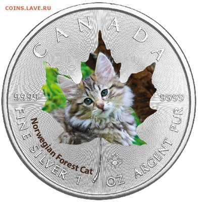 Кошки на монетах - 2017-2