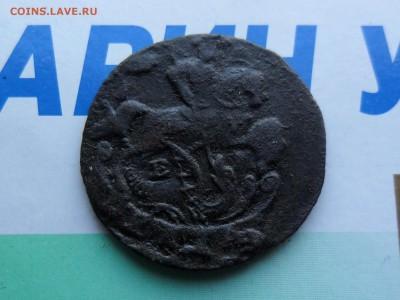 денга 1796ем в  25.1. 22.00 мск - SAM_7243 (1800x1351)