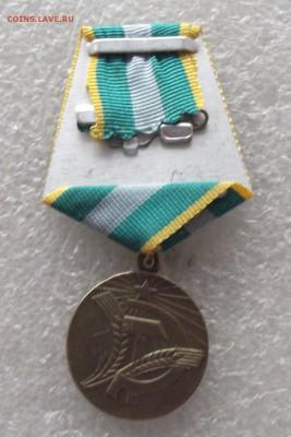копии медалей СССР,до 13.03,В 22.00мск - DSCF5879.JPG