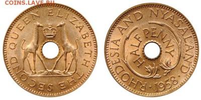 Монеты с отверстием в центре - жирафы