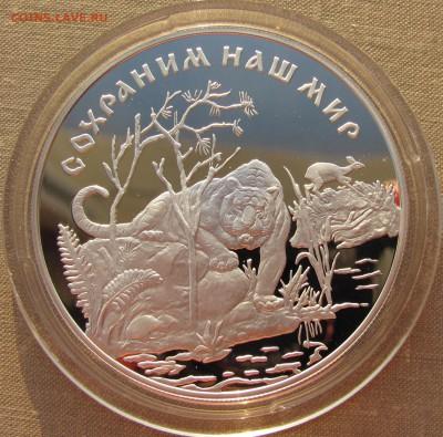 25 рублей 1996 года. Амурский тигр. До 17.04.17 22-00 МСК - 25р 1996 Тигр 1.JPG