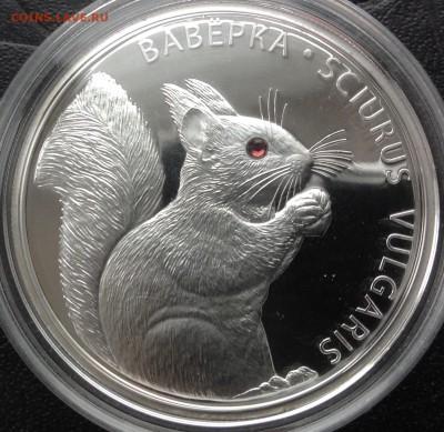 Белка 20 рублей 2009 до 30.4.17 в 22.00 - IMG_8387.JPG