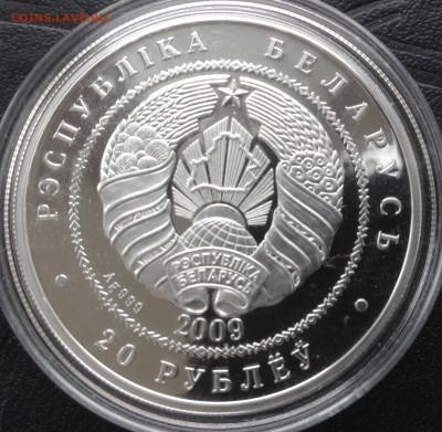 Белка 20 рублей 2009 до 30.4.17 в 22.00 - IMG_8388.JPG