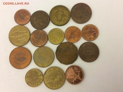 Животные на монетах - IMG_1862.JPG