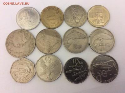 Животные на монетах - IMG_1866.JPG