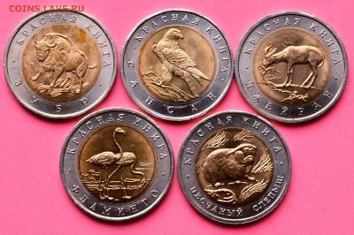 Набор Красная книга 1994. 5 монет. Мешковой UNC 30.05 23-00 - DSC_0470.JPG