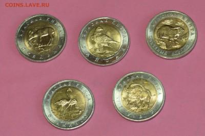 Набор Красная книга 1994. 5 монет. Мешковой UNC 30.05 23-00 - DSC_0462.JPG