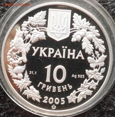 Соня песчаная Украина 10 гривен 2005 г. До ухода в архив - IMG_8713.JPG
