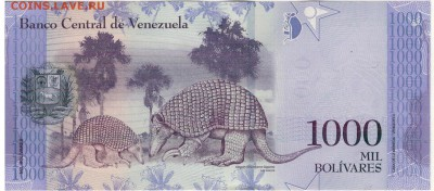 Венесуэла 1000 боливаров 2016 до 25.09.17 в 22.00мск (Е256) - 1-1вен1000б2016