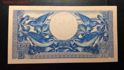 5 рупий 1959г Индонезия UNC - image