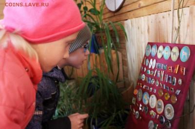 Нужны значки ФАУНА для выставки юннатам - Значки Животный мир - 2