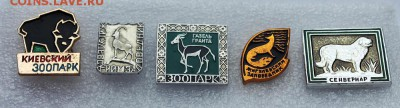 Нужны значки ФАУНА для выставки юннатам - Животные