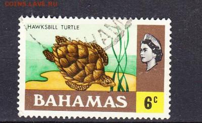 Багамы 1971 1м 6ц - 96