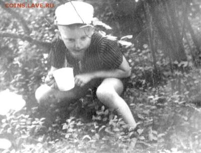 о фотографии, грустно... немолодым написано - Ладушкин. 1967. Много черники