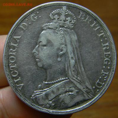 Викторианские кроны - DSCN3303.JPG