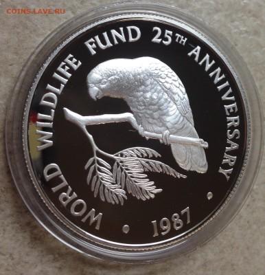 5 долларов Каймановы острова 1987 Пруф, Попугай - ппFullSizeRender (3)