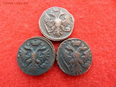 Деньга  3 штуки 1739,1741,1748 г. - DSCN1663[1].JPG