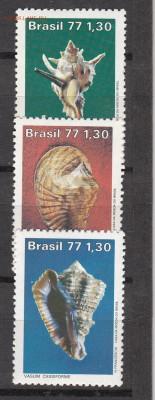 Бразилия 1977 раковины 3м - 70в