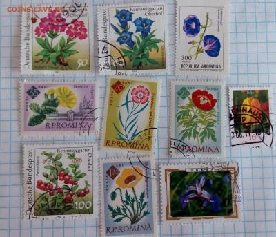 10 марок (цветы),до 10.04. - IMAG3707_1