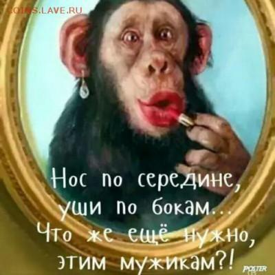 юмор - итроглшщ
