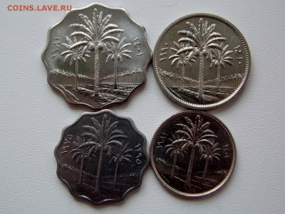 Ирак 4 монеты. до 29.04.18 - DSCN0625 (1280x960)