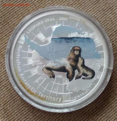 Морской леопард, Австралия, 2005, 1 доллар, серебро, пруф - 1