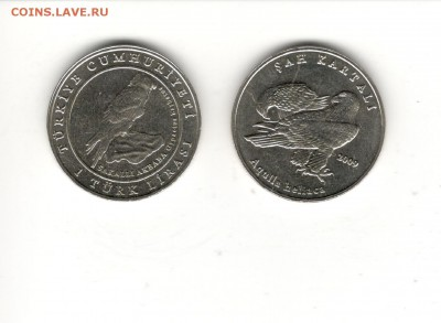 1 лира 2009 Турция, Орел-могильник. ФИКС 205 рублей. - 1 лира Ткрция 2009, орел-могильник