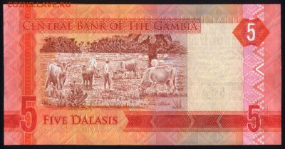 Гамбия 5 даласи 2015 unc 15.06.18. 22:00 мск - 1