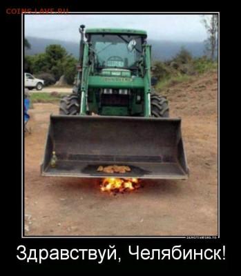 юмор - 9714873_piknik-na-obochine