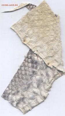 Изделия из кожи крокодила и питона. - Изображение 777 019