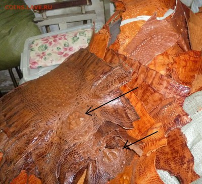 Изделия из кожи крокодила и питона. - P1040180.JPG
