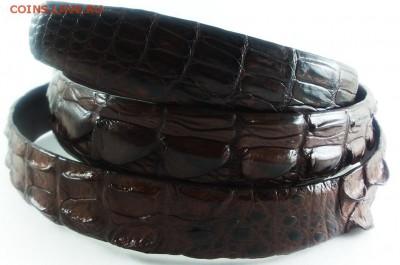 Изделия из кожи крокодила и питона. - 20140616_182115
