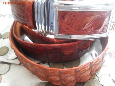 Изделия из кожи крокодила и питона. - 20120107_121846