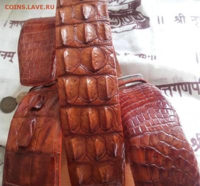 Изделия из кожи крокодила и питона. - 20120107_121929