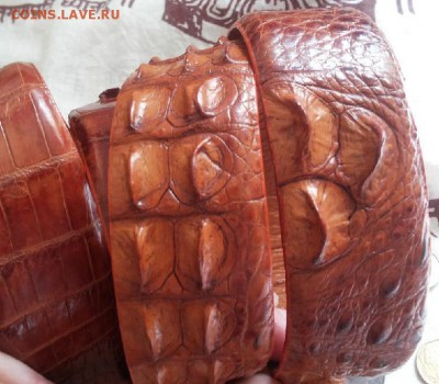 Изделия из кожи крокодила и питона. - 20120107_121954