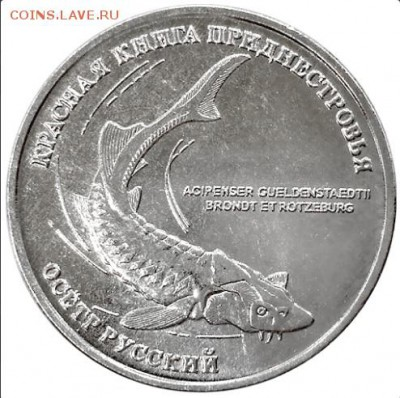 Животные на монетах - Осётр