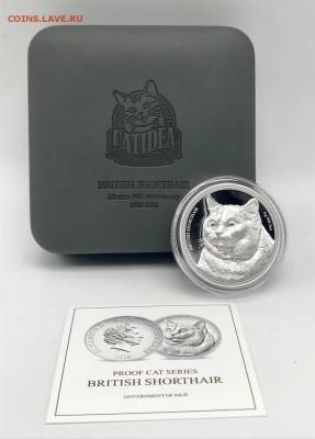 Кошки на монетах - 2-1018-3