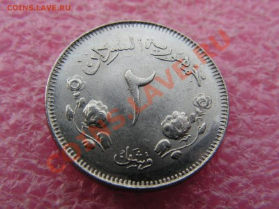-Судан- 2 гирш 1963 -- 18 мая 22-00 - 105.JPG