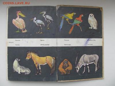 Природоведение. Учебник для 4-го класса. 1973 г. до 09.10. - IMG_1695.JPG