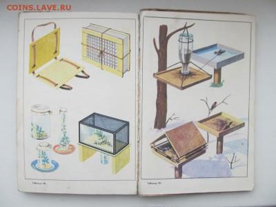 Природоведение. Учебник для 4-го класса. 1973 г. до 09.10. - IMG_1694.JPG
