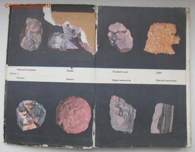 Природоведение. Учебник для 4-го класса. 1973 г. до 09.10. - IMG_1691.JPG