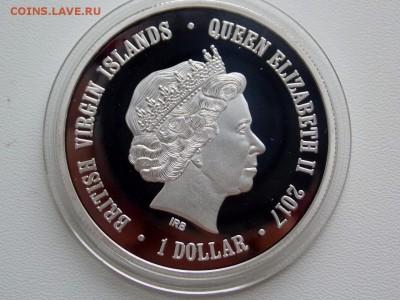 Вергинские острова 1 доллар Сова - DSCN7272 (1280x960)