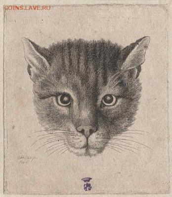 Кошки на монетах - Вацлав Холлар-7