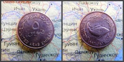 ОАЭ 5 филсов, 1416 (1996) - 17
