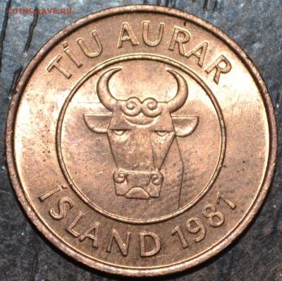 С 1 РУБЛЯ Исландия 10 урар 1981 Кальмар до 13.01.19 22 мск - DSC_5086.JPG
